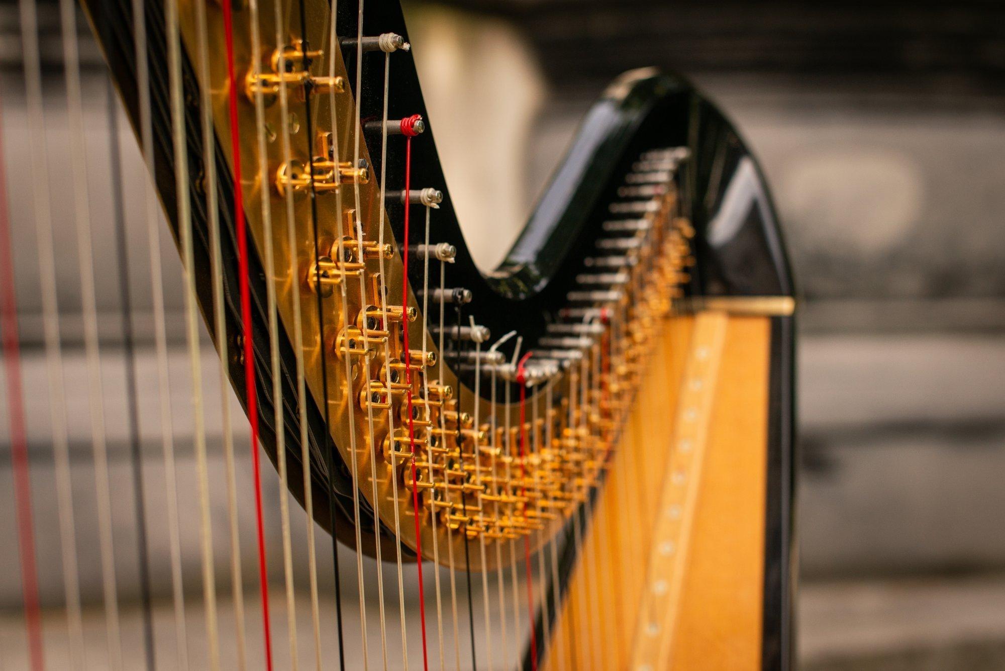 Alex-the-Harpist-17-e1536948323852