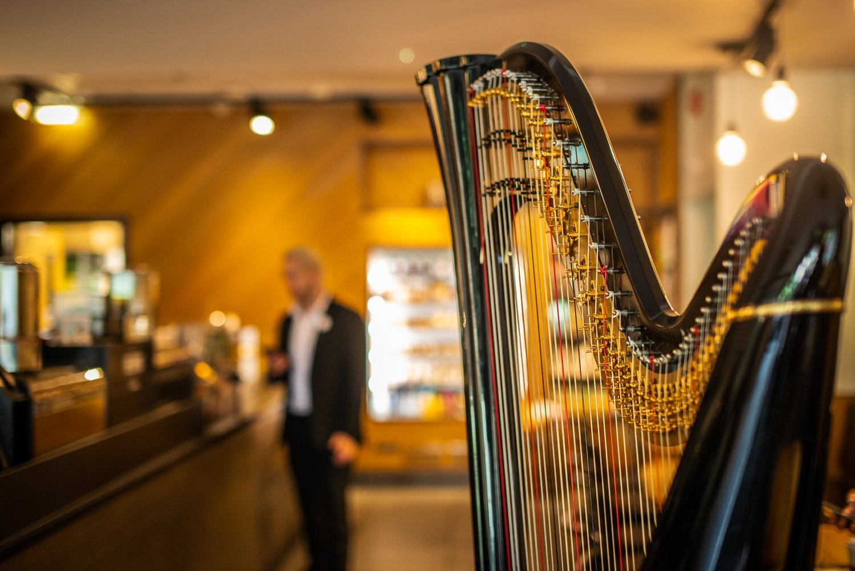 Alex the Harpist-56